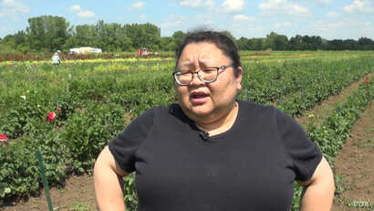 Pakou Hang, a co-founder of HAFA, says the association was formed to even the playing field for Hmong farmers who were finding it hard to compete.