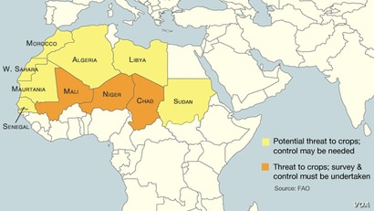 Perceived risk or threat of locust infestations, October 2012.