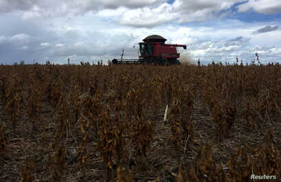 FILE - Soybeans are harvested at a farm in Porto Nacional, Tocantins state, Brazil, March 24, 2018.