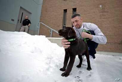 Inmate Justin Martin takes a chocolate lab puppy outside at Merrimack County Jail in Boscawen, N.H., Jan. 8, 2019.