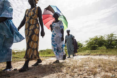 In this photo taken Monday, Oct. 19, 2015, women walk on farmlands that were destroyed by high salt content due to rising sea levels in Saloum Delta, Diamniadio Island in Senegal.