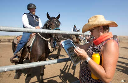 In this Sept. 10, 2016, photo, prospective buyer Kimela Hancock looks over the program at the auction held by Wild Horse Program at the Sacramento County Sheriff's Department, Rio Cosumnes Correctional Center in Elk Grove, Calif.