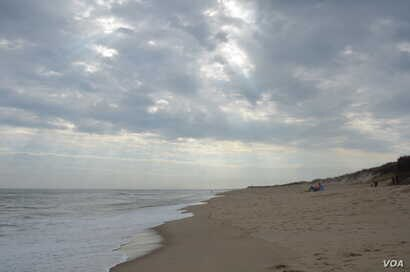Six million tourists visit the charming peninsula of Cape Cod in the northeastern state of Massachusetts each year.