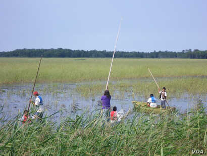 A Native American Leech Lake Band of Ojibwe youth tends to a rice crop on the Leech Lake Reservation in Minnesota on Aug. 27, 2012.