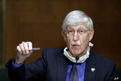 National Institutes of Health Director Dr. Francis Collins speaks during a Senate Health Education Labor and Pensions Committee…