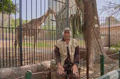 Nady Abdulhalim Mahmoud, a zookeeper, is anxious for public life to start again but fears the virus, in Giza, Cairo, April 16, 2020. (Hamada Elrasam/VOA)