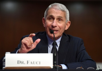 Dr. Anthony Fauci, director of the National Institute for Allergy and Infectious Diseases, testifies before a Senate Health,…