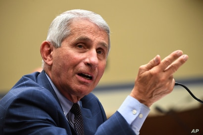 Dr. Anthony Fauci, director of the National Institute for Allergy and Infectious Diseases, speaks during a House Subcommittee…