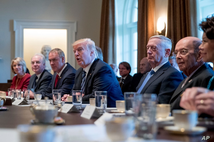 President Donald Trump speaks during a Cabinet meeting in the Cabinet Room of the White House in Washington, March 13, 2017.