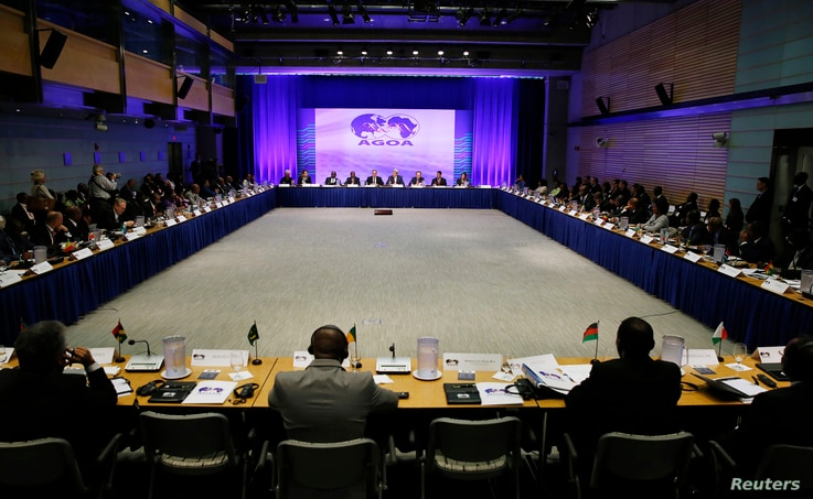 Representatives from various African nations gather at the opening session at the AGOA Forum during the US-Africa Leaders Summit in Washington August 4, 2014.   REUTERS/Gary Cameron    (UNITED STATES - Tags: POLITICS BUSINESS) - RTR416GJ