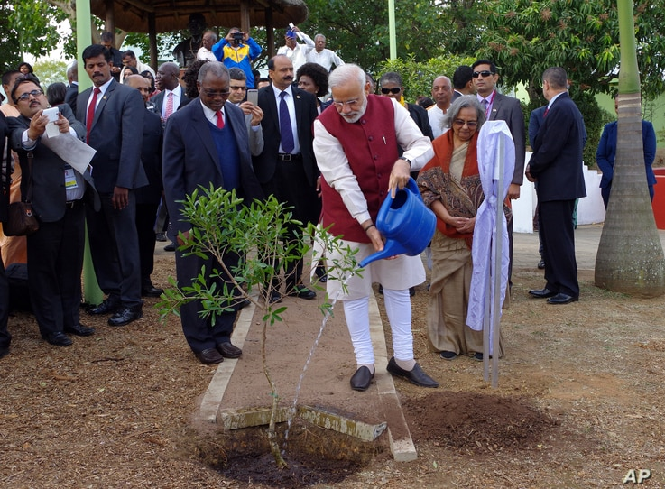 Indian Prime Minister Narendra Modi plants a tree at a settlement established by Mahatma Gandhi on the outskirts of Durban, South Africa, July 9, 2016. Modi is on a four nation trip to Africa.