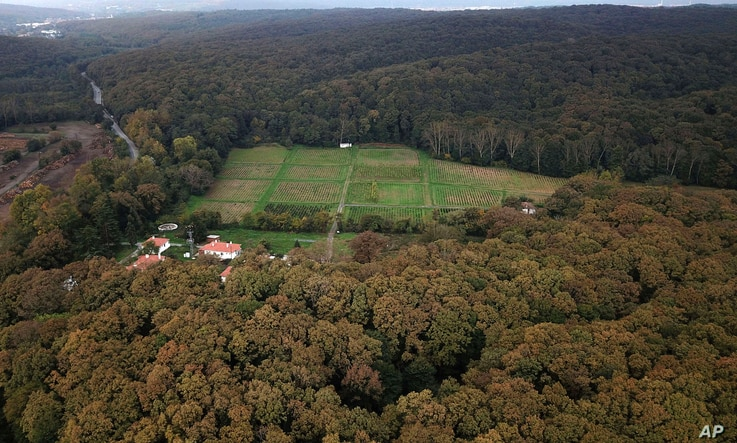 An aerial view of the Belgrad Forest in Istanbul, Oct. 19, 2018. The forest is being searched for possible remains of missing Saudi journalist Jamal Khashoggi.