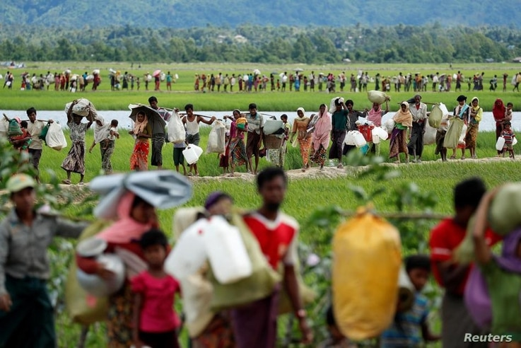 Rohingya refugees walk through rice fields after crossing the border from Myanmar into Palang Khali, Bangladesh, October 19, 2017. © 2017 Jorge Silva/Reuters