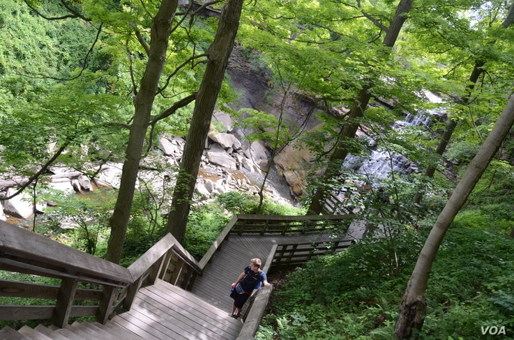It's a long way to the top for Mikah Meyer, but worth every step. Cuyahoga Valley National Park, Ohio.