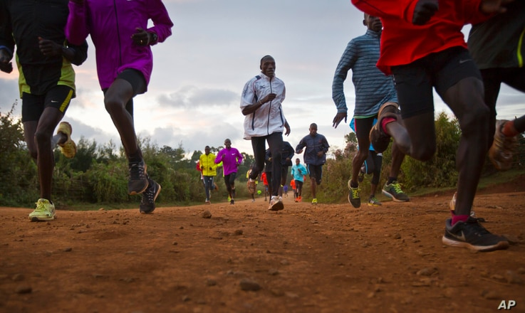 FILE - Kenyan athletes train together just after dawn, in Kaptagat Forest in western Kenya. World Anti-Doping Agency (WADA) officials declared Kenya's drug-fighting agency out of compliance.