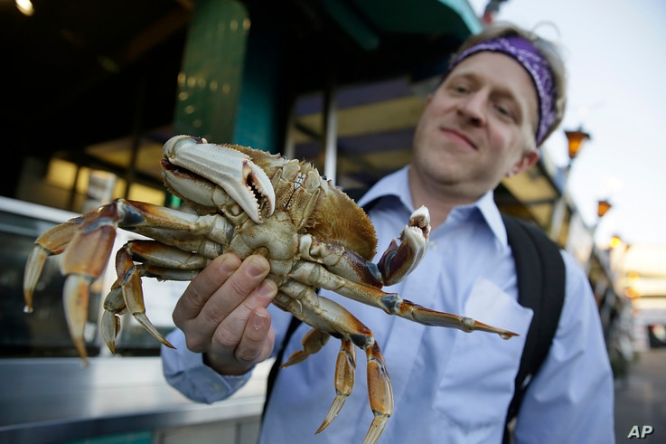Michael Bair, of Lexington, Ky., holds an imported Dungeness crab from the Northwest at Fisherman's Wharf in San Francisco, Nov. 10, 2015.