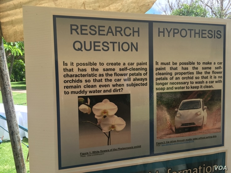 The cleanliness of the orchid flower inspired Jan-Williem Verhoef, 13, of the Hoerskool Garsfontein School in South Africa to investigate a self-cleaning car at the inaugural Africa Science Buskers Festival in Harare, Zimbabwe, March 2017. (S. Mhofu/...