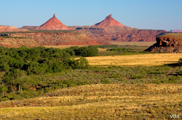 Seen in the distance are the twin buttes which gave the Bears Ears area its name. The are considered sacred to Navajo, Hopi and Ute tribal people and figure prominently in their traditional narratives.  Courtesy, Bureau of Land Managment, Dept. of th
