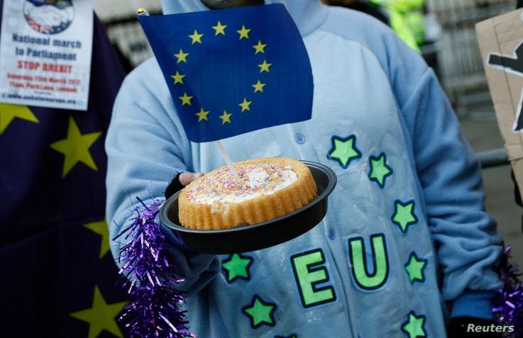 A pro-Europe supporter holds a cake with a EU flag in it, following the decision of the Supreme Court that Theresa May's government requires parliamentary approval to start the process of leaving the European Union, in Parliament Square, central Lond...