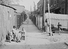 Washington, D.C.'s poor people eked out an existence in the places like De Frees Alley, photographed in 1941. They were underground in the metaphorical, not literal, sense.