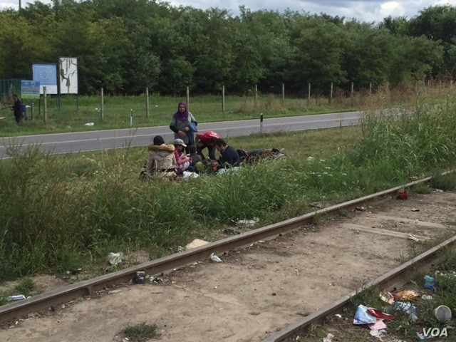 Refugees rest on the side of the road in northern Serbia.