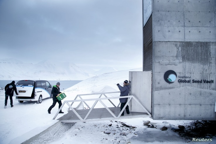 FILE - One of the newly arrived boxes containing seeds from Japan and the U.S. is carried into the international gene bank Svalbard Global Seed Vault (SGSV) outside Longyearbyen on Spitsbergen, Norway, March 1, 2016.