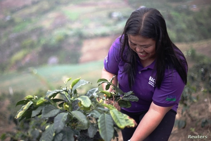 Marivic Dubria of the Balutakig Coffee Farmers Association tends to a coffee plant on her farm in Mindanao, the Philippines, March 26, 2018.