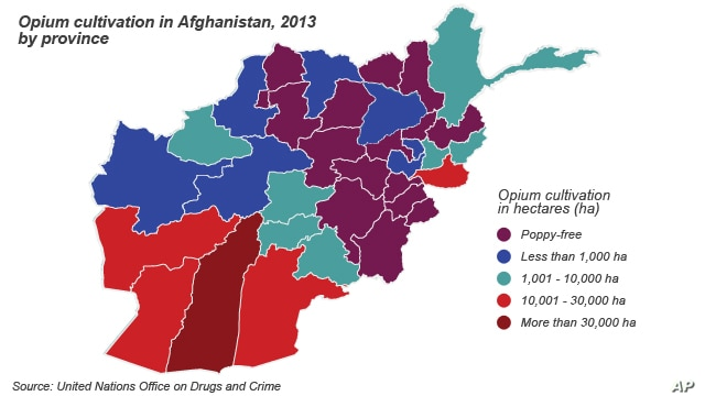 Cultivation of opium in Afghanistan provinces