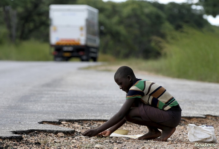 A woman gathers grain spilled by cargo trucks from Zambia along a highway in Magunje, Zimbabwe, Feb. 20, 2016.