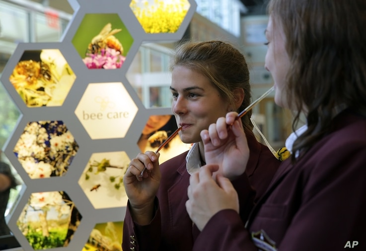 FILE - St. Thomas More Academy students sample honey sticks during a tour of the Bayer North American Bee Care Center in Research Triangle Park, N.C., Sept. 15, 2015.