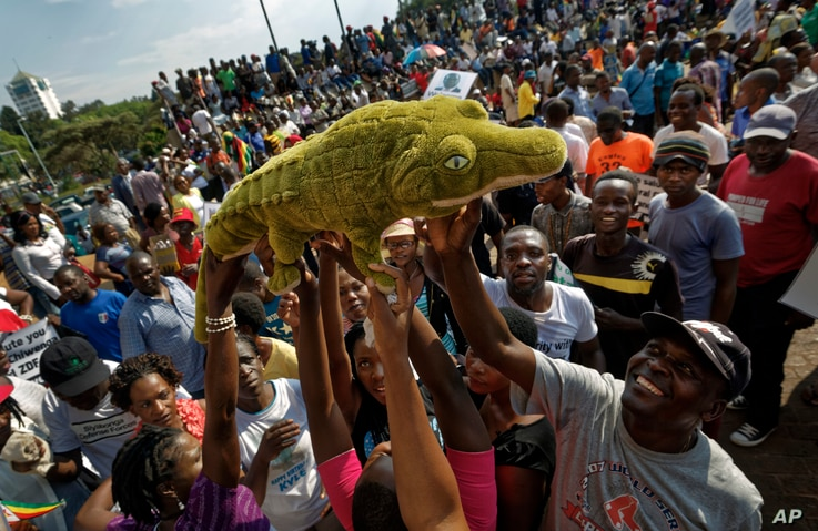 """Supporters of Zimbabwe's President in waiting Emmerson Mnangagwa, known as """"The Crocodile"""", raise a stuffed crocodile in the air as they await his arrival at the Zanu-PF party headquarters in Harare, Zimbabwe, Nov. 22, 2017."""