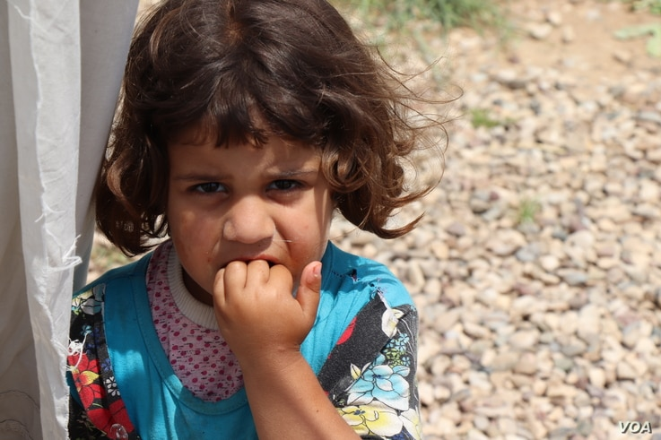 In the camps, families say their immediate needs — like cooking gas, schools and money — are more critical to them than national politics, at the Hassan Sham camp in Iraq, May 10, 2018.