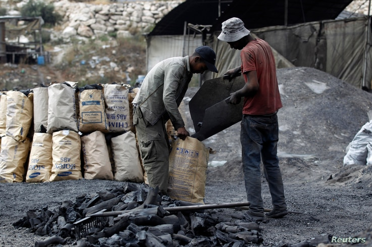 FILE - Palestinian workers fill coal in bags to be sold at charcoal making site, in West Bank village of Yabad near Jenin, June 11, 2014.