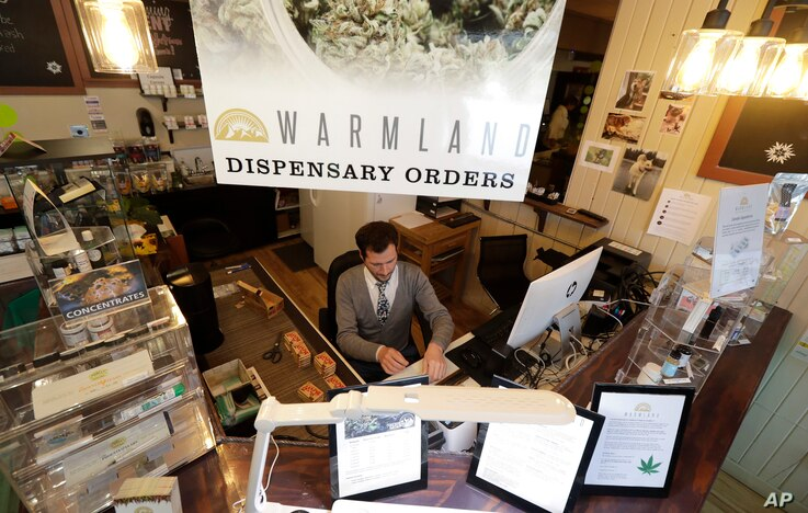 FILE - Bud tender Dave Chelli works at the Warmland Centre, a medical marijuana dispensary in Mill Bay, British Columbia, on Vancouver Island, Sept. 24, 2018.