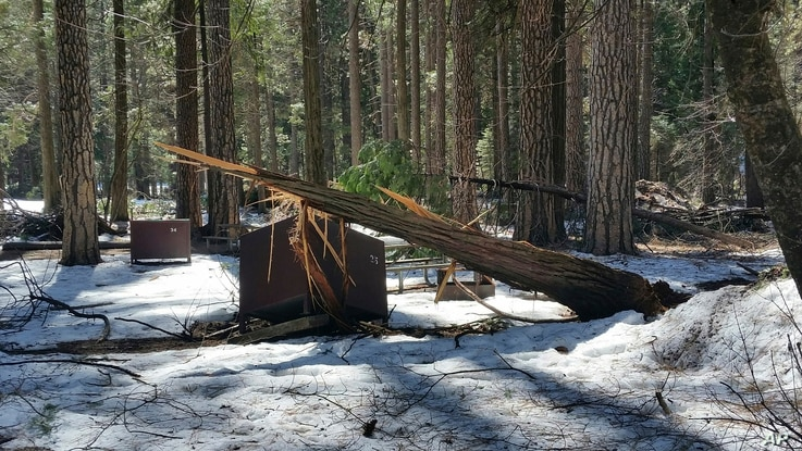 A damaged bear box is seen after the recent heavy snowpack in Yosemite National Park, Calif., in this photo released March 13, 2019, by the National Park Service.