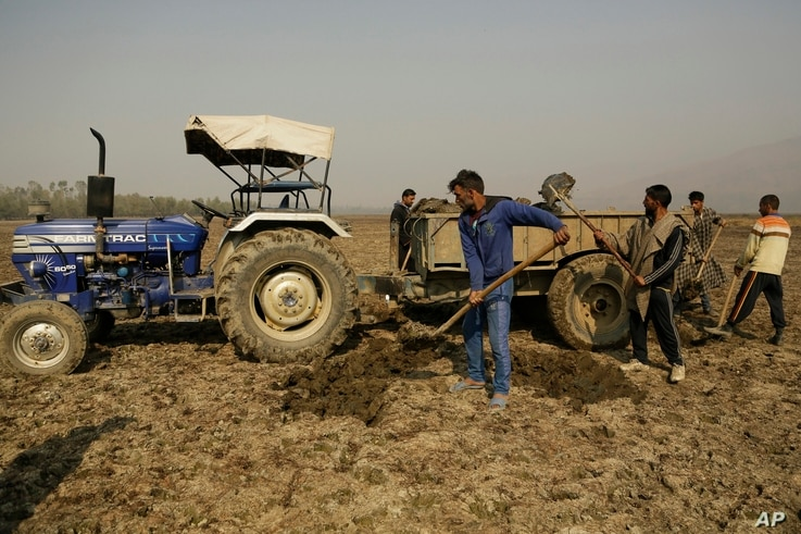 Kashmiri villagers collect soil from a dried portion of Wular Lake, northeast of Srinagar, Indian-controlled Kashmir, Oct. 29, 2016. Wular Lake holds less than half its former capacity, and restoring it may prove too tough.