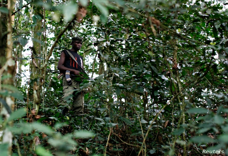 FILE - A fighter from the FDLR rebel group, which is being hunted by the Rwandan and Congolese armies, stands guard deep in the bush of eastern Congo.