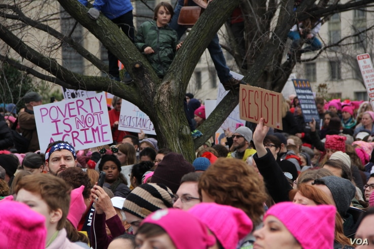 A young boy looks on the Women's March rally crowd from a tree in Washington, D.C., Jan. 21, 2017. (E. Sarai/VOA)