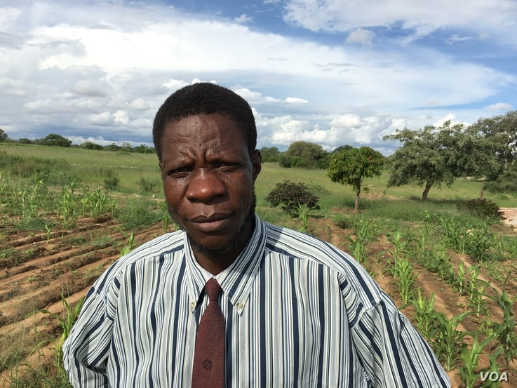 Taringana Makiwa, an official with the state-owned Agricultural Extension Service, is shown in a field in Chivi, Zimbabwe, in March 2016. The extension service advises Zimbabwean farmers to plant small grains — especially finger millet, pearl mille...