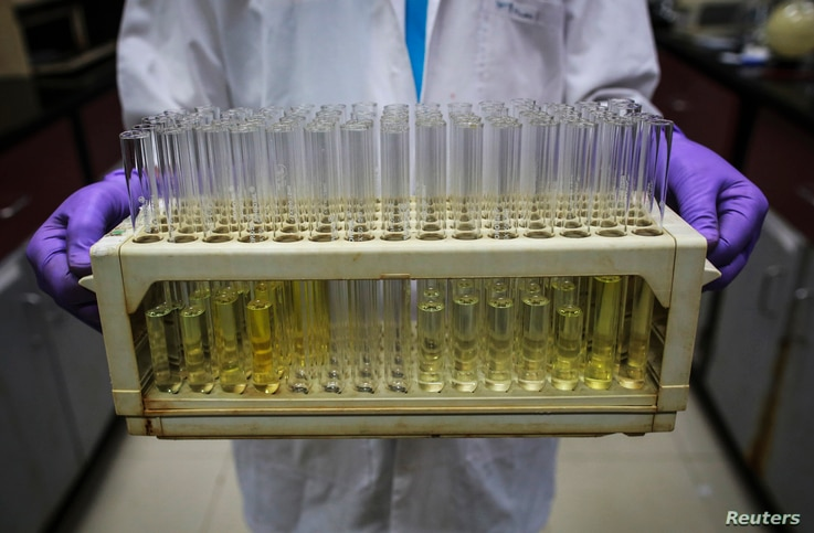 FILE - An employee carries test tubes inside a laboratory in India, Aug. 11, 2014.