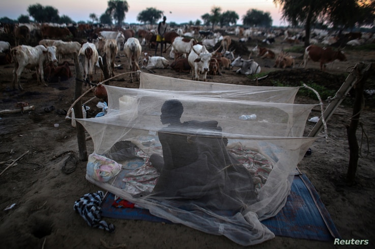A man from the Dinka Ngok cattle herder tribe wakes up in a mosquito tent in a cattle camp near the town of Abyei October 31, 2013. The Dinka are an ethnic group inhabiting part of the Nile basin primarily in South Sudan. The largest ethnic tribe in