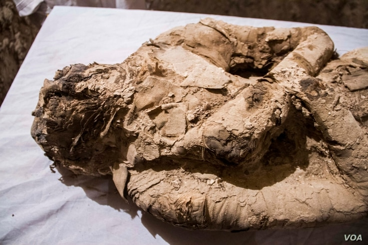This mummy wrapped in linen, with its hands on its chest in the Osirian form, was found inside the long chamber of the Kampp 150 tomb. Studies suggest that the mummy could have been a top official or a powerful person in the Draa Abul Naga necropolis...