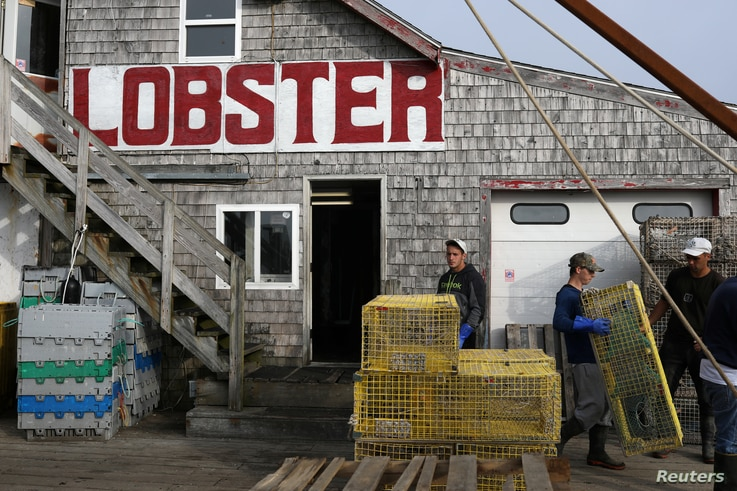 Men carry lobster traps at Greenhead Lobster docks in Stonington, Maine, July 7, 2017.