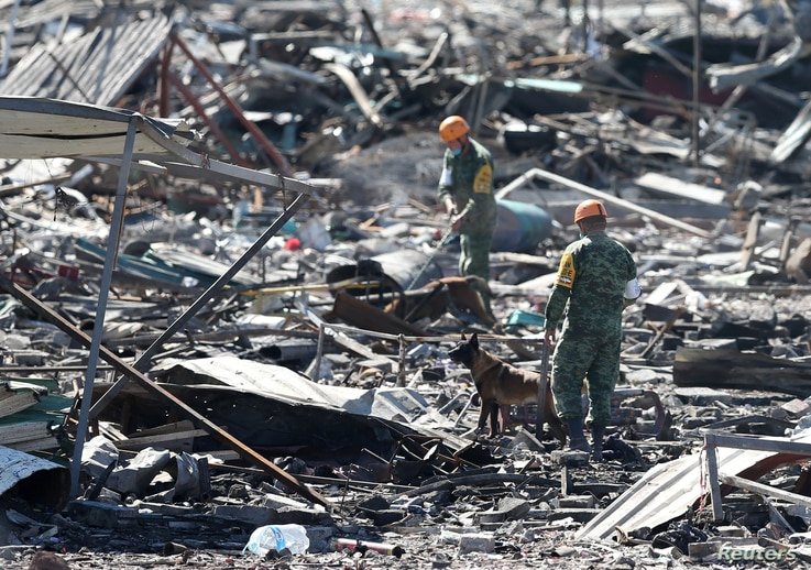 Handlers and their dogs carry out a search amidst the wreckage of houses destroyed in an explosion at the San Pablito fireworks market outside the Mexican capital, in Tultepec, Mexico, Dec. 21, 2016.