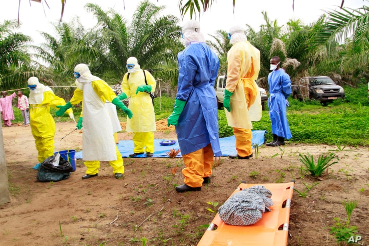 Ebola's surge across West Africa claimed 11,000 lives in 2015.
