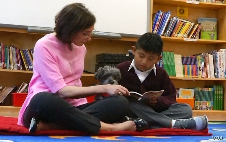 The R.E.A.D. teams from New York Therapy Animals work with 175 kids at Public School 57 and nine other schools.