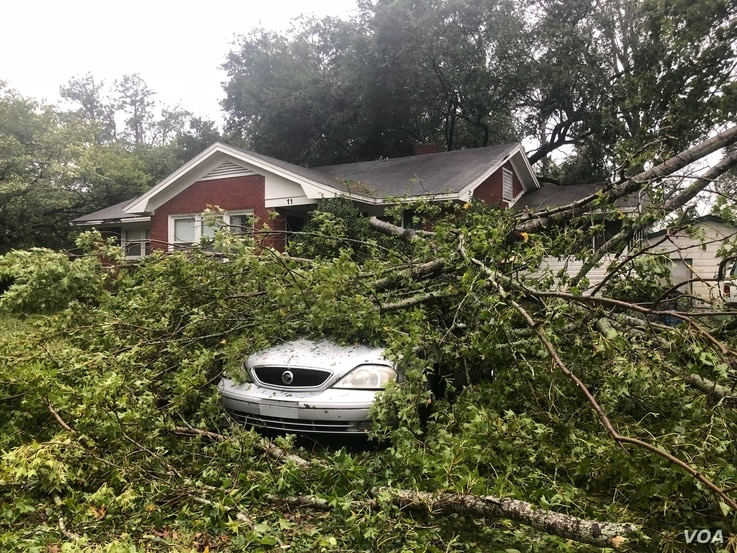 A tree fell on a homeowner's car, parked in the driveway as Hurricane Florence made landfall in Wilmington, North Carolina. (Photo: Jorge Agobian, Iacopo Luzi / VOA Spanish)
