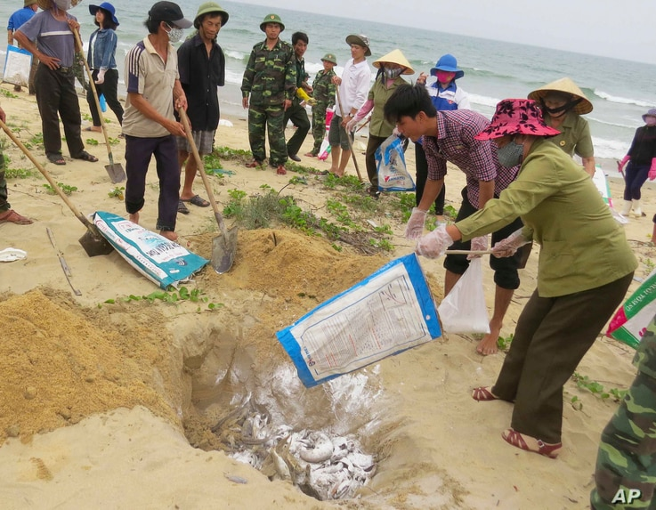 FILE- In this April 28, 2016, file photo, villagers bury dead fish on a beach in Quang Binh, Vietnam. Toxic waste discharged from a Taiwanese-owned Formosa Plastics Group steel complex unit in central Vietnam harmed the livelihoods of more than 200,0...