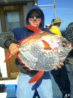 """Shannon Hunter of Newport holds an opah caught last summer on the charter vessel """"Misty."""" Opah is normally found in Hawaiian waters."""