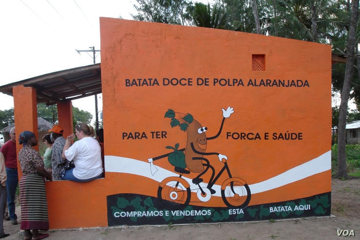 FILE - A kiosk promoting orange-fleshed sweet potatoes is seen in Mozambique. (Courtesy - HarvestPlus)